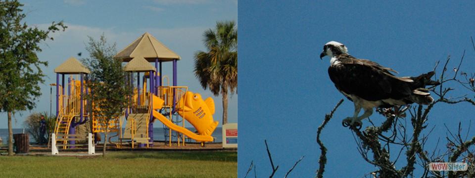 Public Beach & Playground